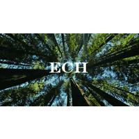 Evergreen State Holdings Llc logo