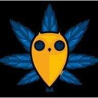 Flowers Cannabis logo