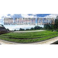 Kula Farms logo