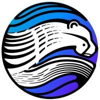Phenom Consulting Group logo
